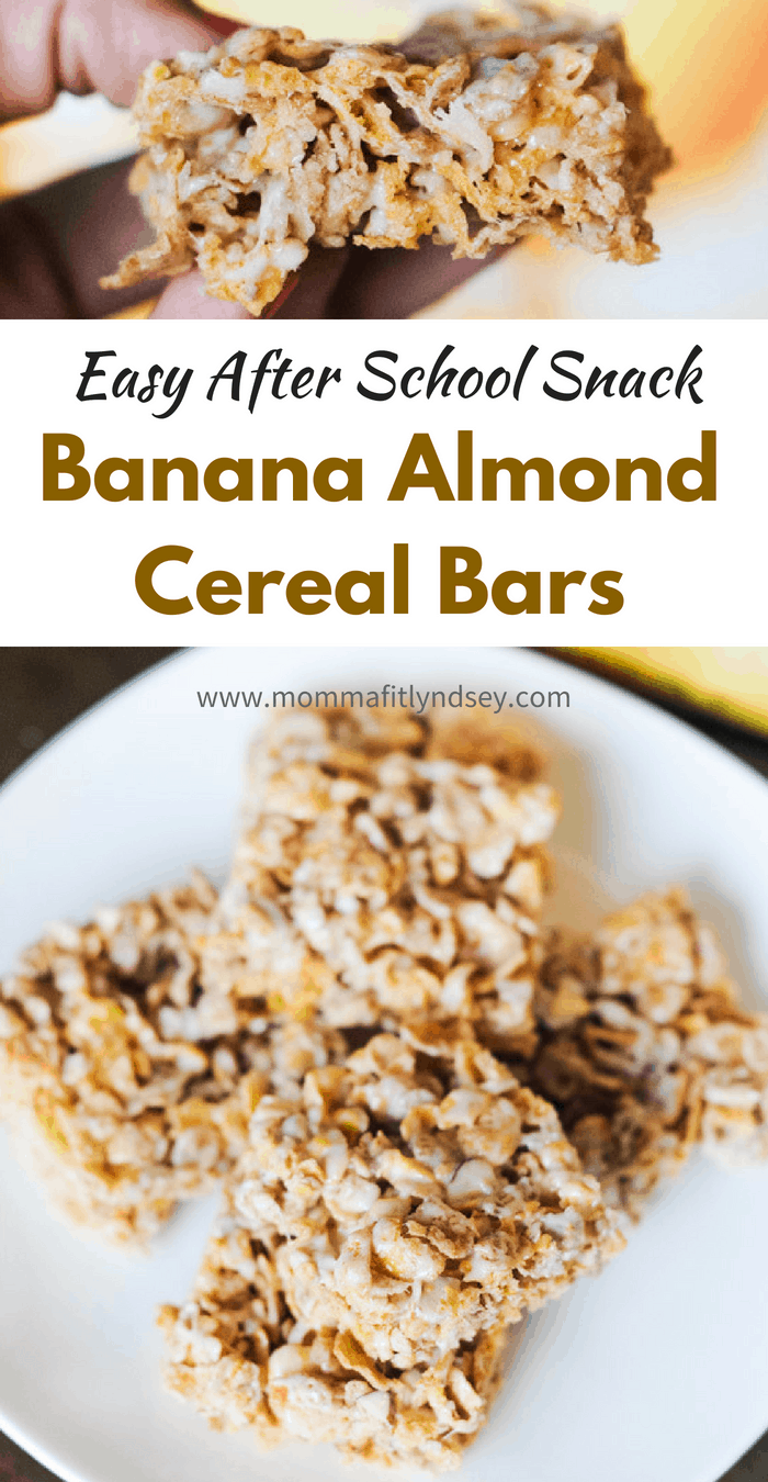breakfast bar recipes for easy after school snack ideas