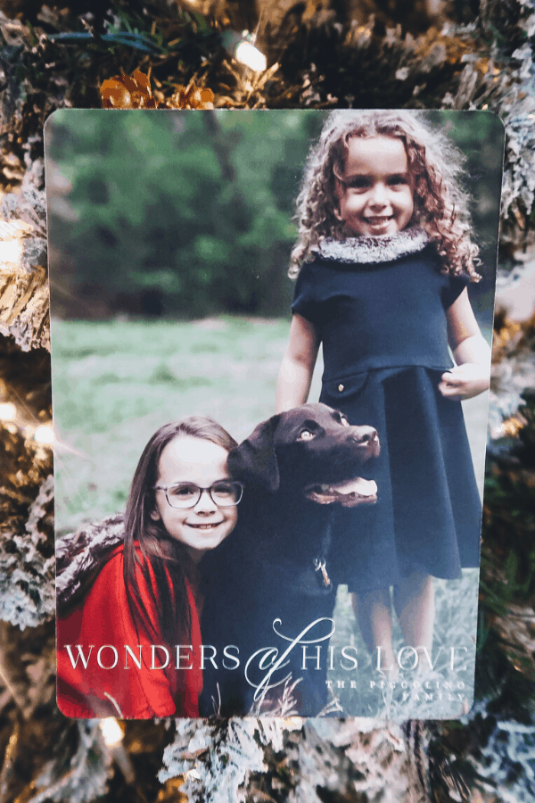 Minted Christmas cards are gorgeous and unique to send to your family and friends during the holidays. Pre-address labels and matching stamps make it easy.