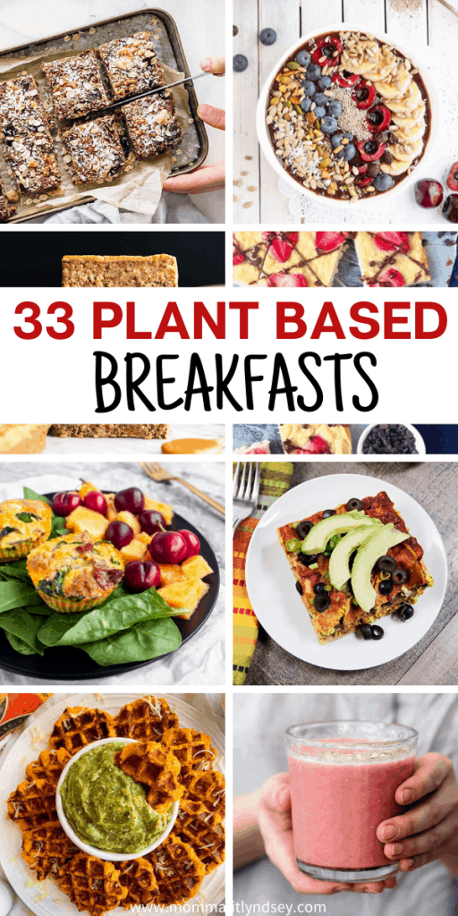 33 Easy plant based breakfast recipes for healthy plant based breakfasts. Ideas include on the go and breakfasts for kids like smoothies, bars, oatmeal and more. Low carb and whole food ideas as well.